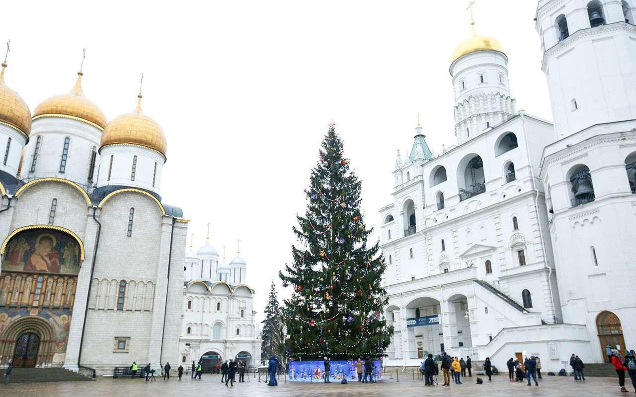 Главная елка страны (икак еевезли вКремль)— фото 932554