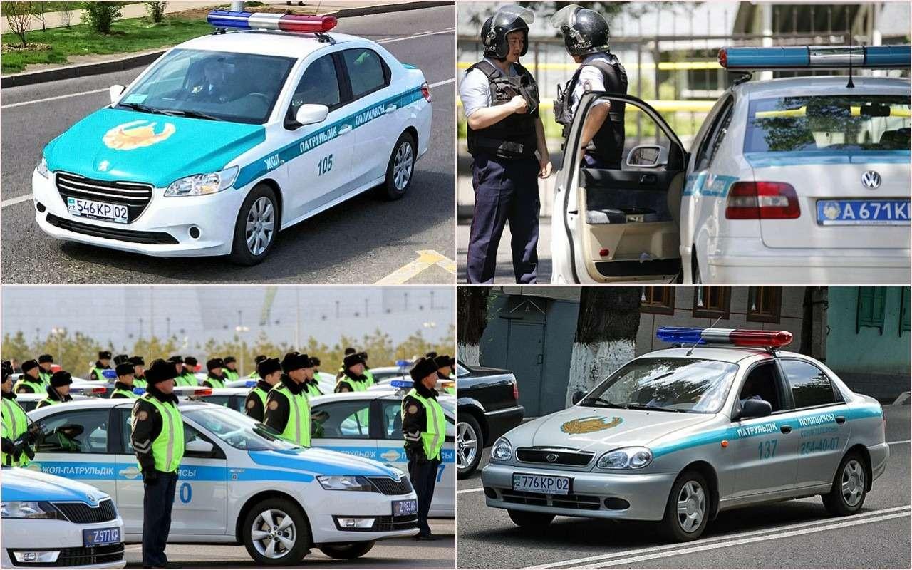 Выбор полиции: начем ездят копы разных стран— фото 785094