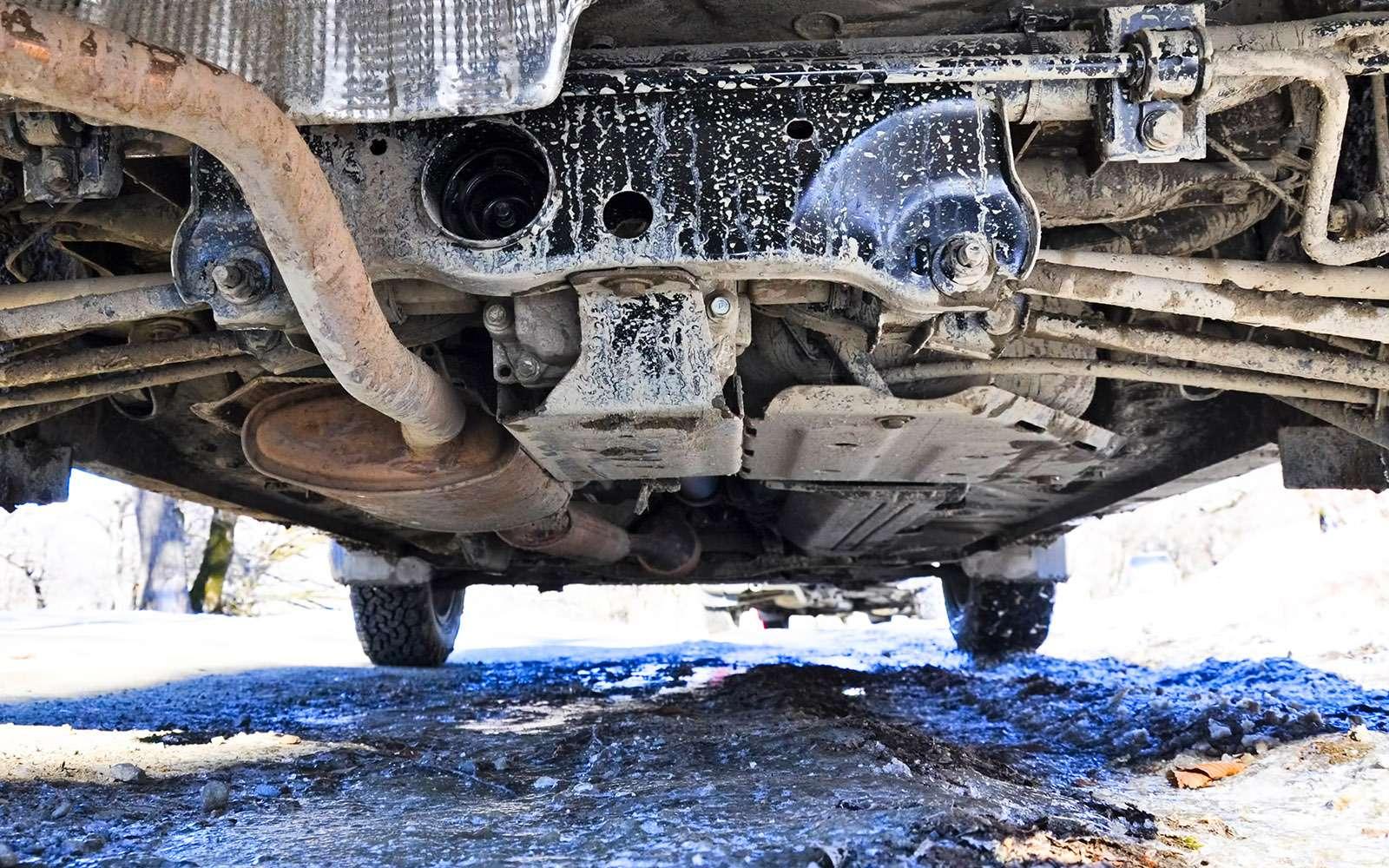 Renault Duster Dakar Edition: это только начало!..— фото 698369