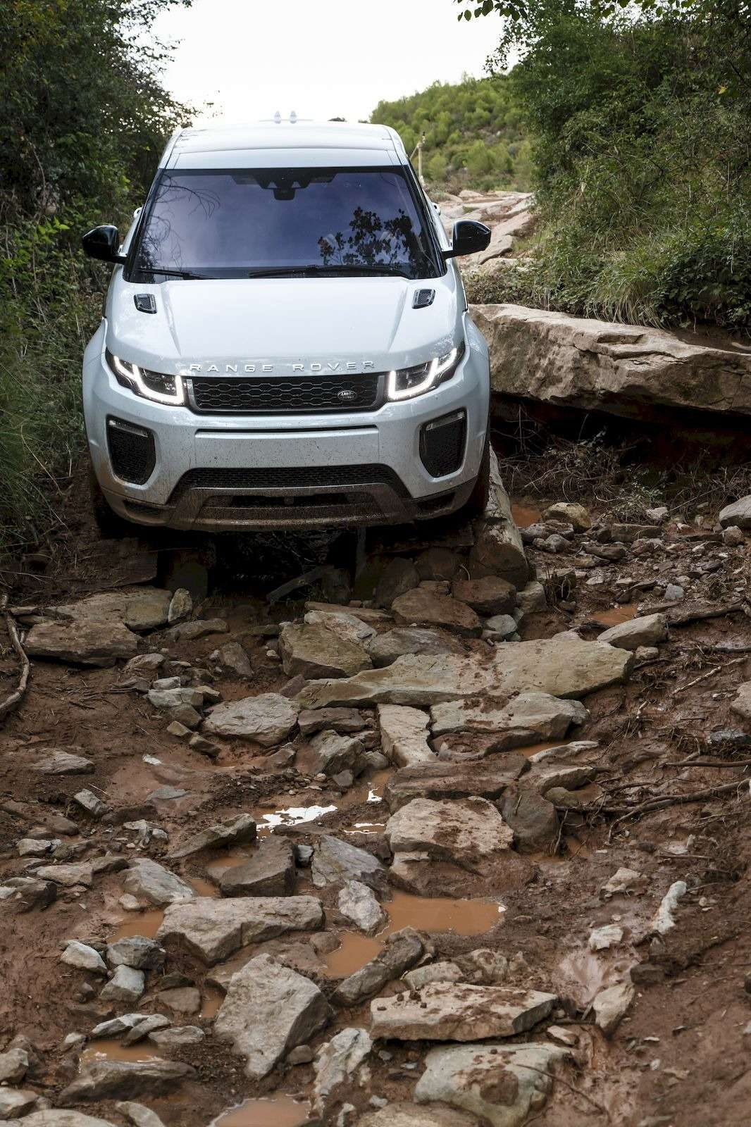 RR_Evoque16MY_4WD_132_result