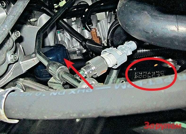 Масляный фильтр (показан стрелкой) упрятан насовесть. Даже имея съемник, действуйте аккуратно, дабы не повредить коммуникации. Номер двигателя (вкружкоче) лучше сразу покрыть антикором.