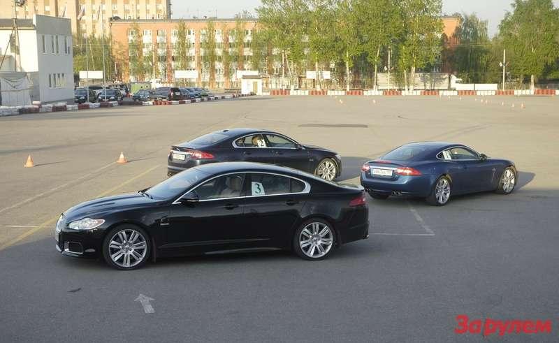 Слушателям курсов доступен весь модельный ряд Jaguar