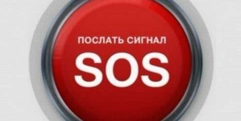 Интер-SOS наавтотранспорте создают поинициативе НАМИ
