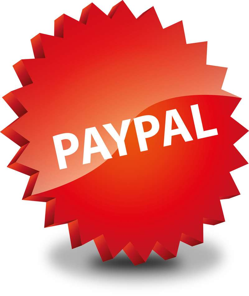 Button Rund Paypal Pay Pal