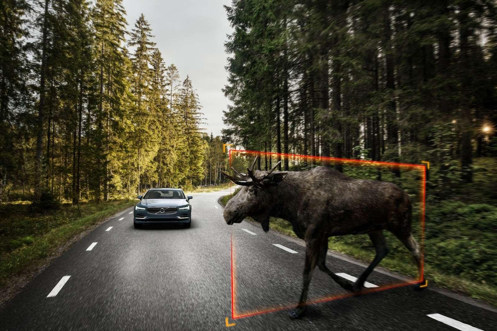 Оператив ЗР: вкого метит Volvo S90— фото 595874
