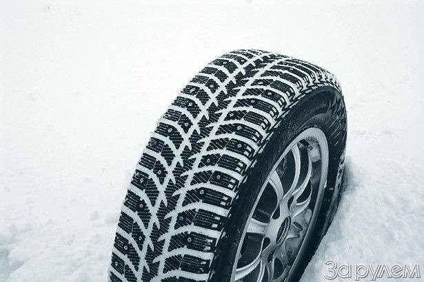 Если завтра зима— фото 77595