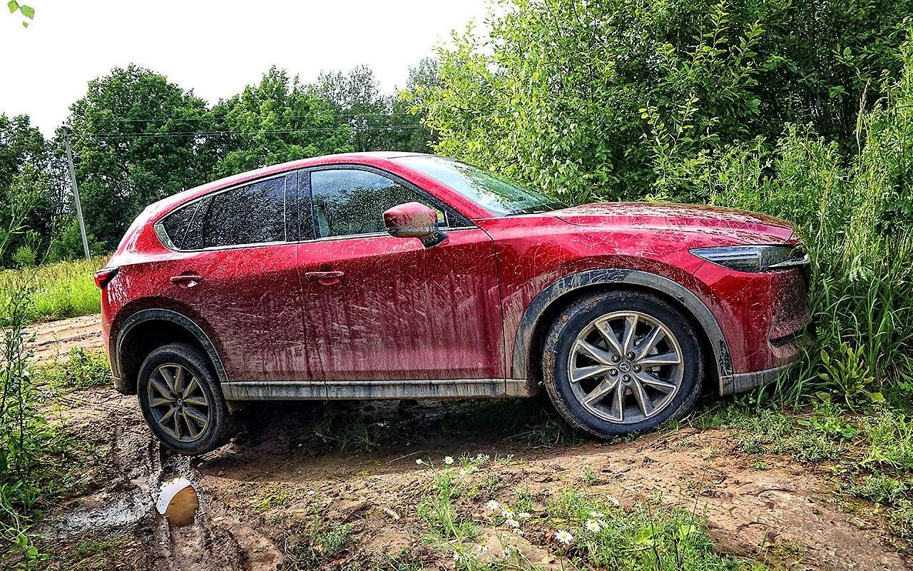 Mazda CX-5— тест-драйв пороссийским дорогам— фото 784044