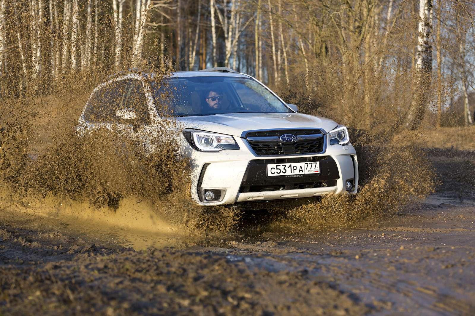 Обновленный  Subaru Forester: тише едешь...— фото 594315
