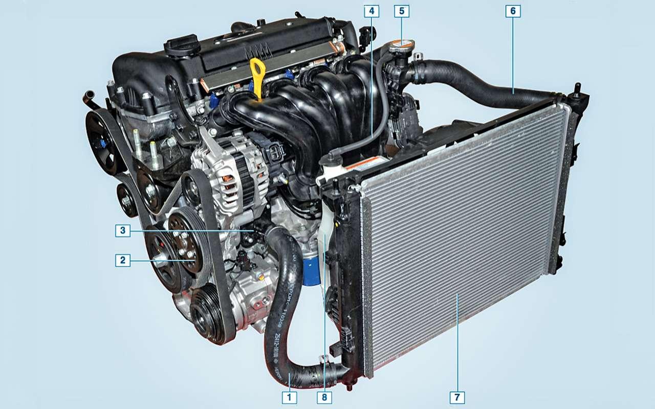 Система охлаждения ДВС: как устроена инадо ли промывать еезимой?— фото 824409