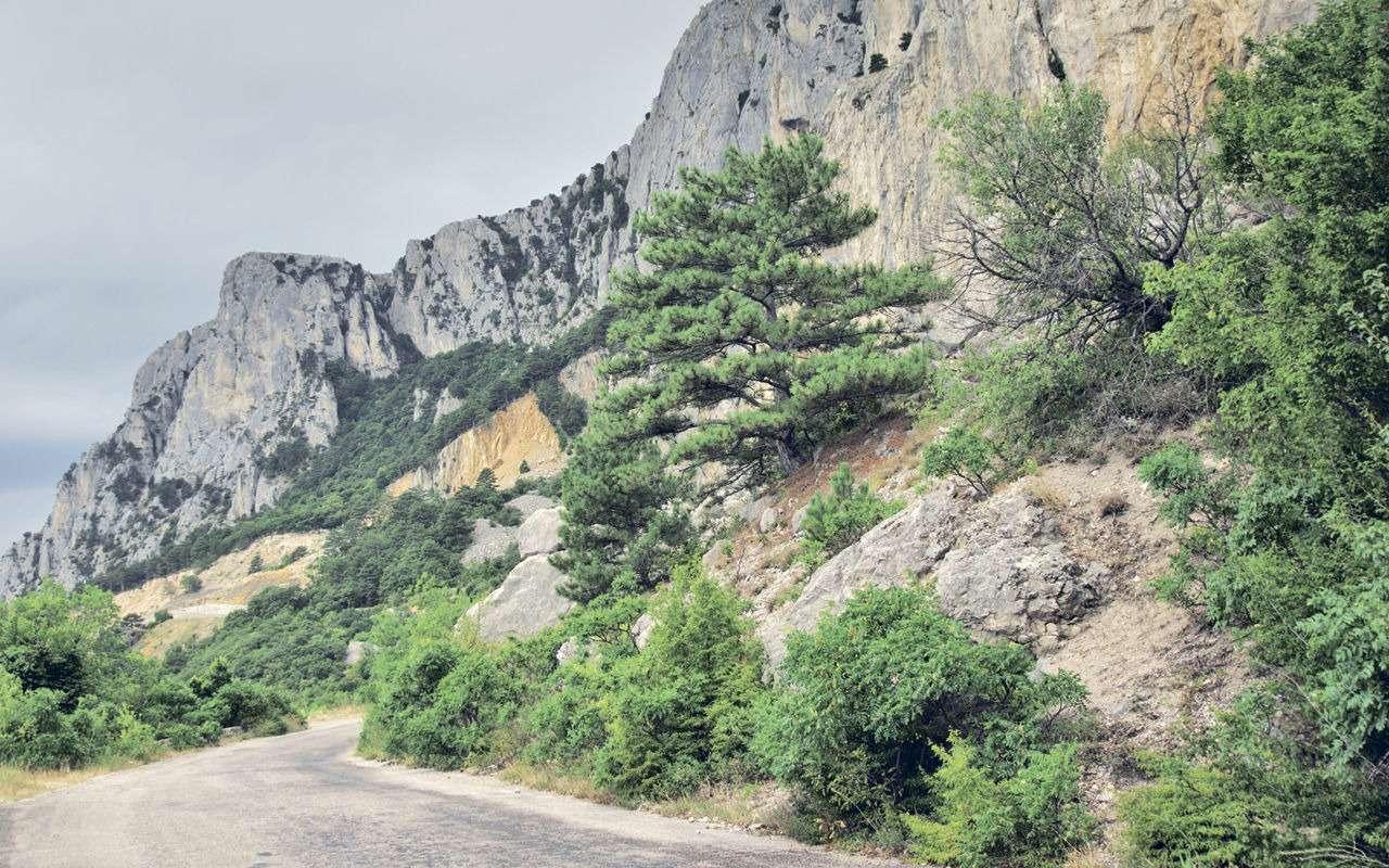 Старая севастопольская дорога— лучший маршрут дляпутешествия— фото 1153465