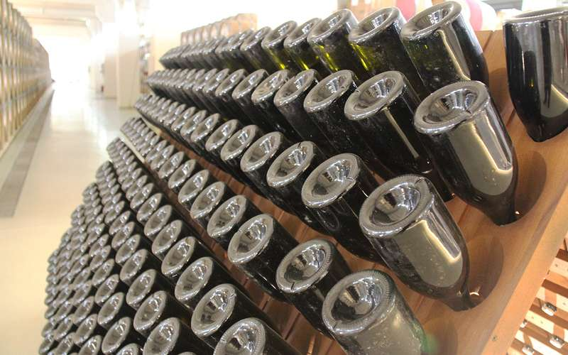 Марш-бросок «За рулем»: как делают российское вино
