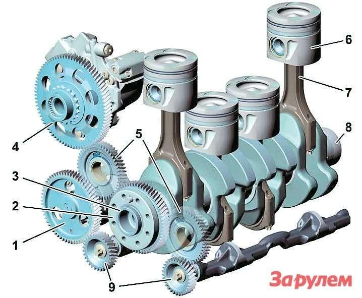 Привод валов двигателя OM6511— шестерня привода масляного ивакуумного насосов,  2— шестерня коленвала,  3— коленвал,  4— шестерня привода ТНВД,  5— промежуточные шестерни,  6— поршень,  7— шатун,  8— гаситель вибраций,  9— балансировочные валы
