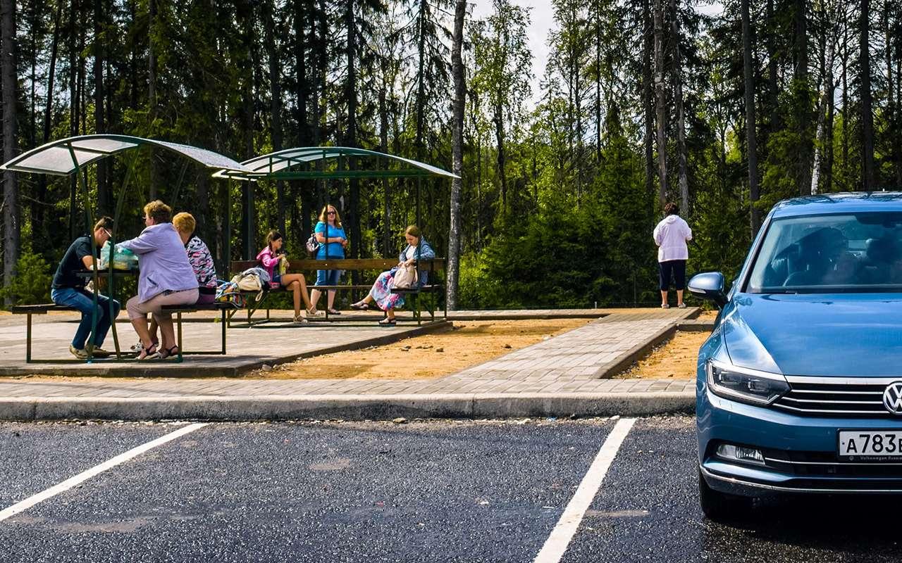 Едем изМосквы вПитер разными дорогами: как дешевле икак быстрее— фото 908428