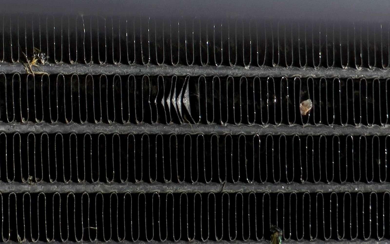 Обслуживание Renault Arkana: все плюсы иреальные недостатки— фото 989257