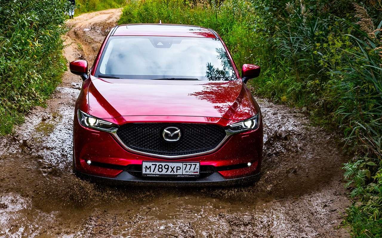 Чейполный привод круче— Ford Kuga или Mazda CX-5?— фото 825758
