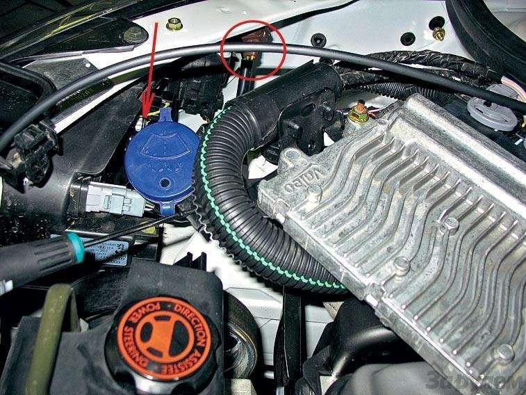 Тест-ремонт Peugeot 206: Парад-алле— фото 91540
