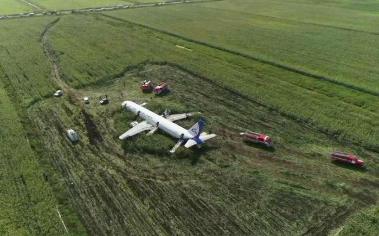 В Раменском районе ограничили автодвижение из-за самолета— фото 992129