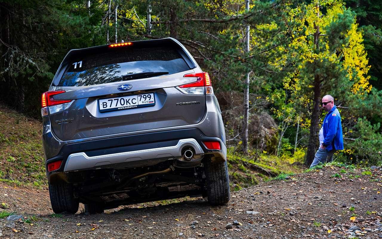 Новый Subaru Forester— тест-драйв без наддувательства— фото 930678