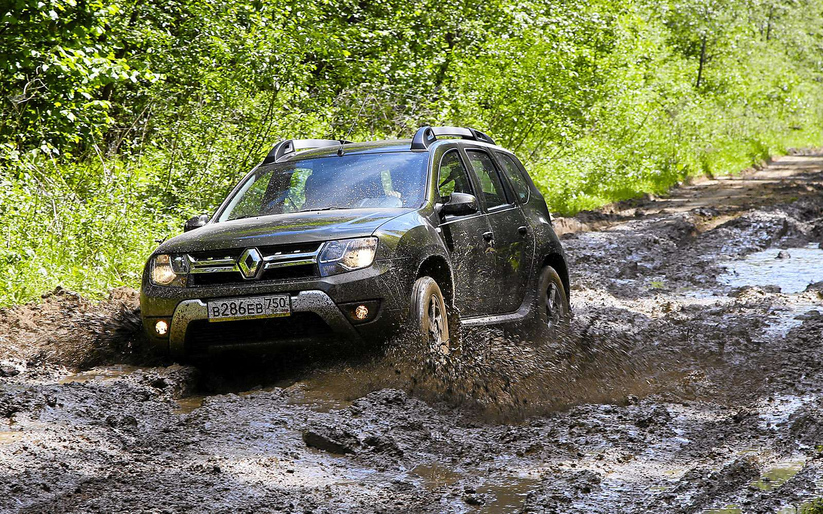 Renault Kaptur, Renault Duster, Suzuki Vitara: мода от-каптюр— фото 619979