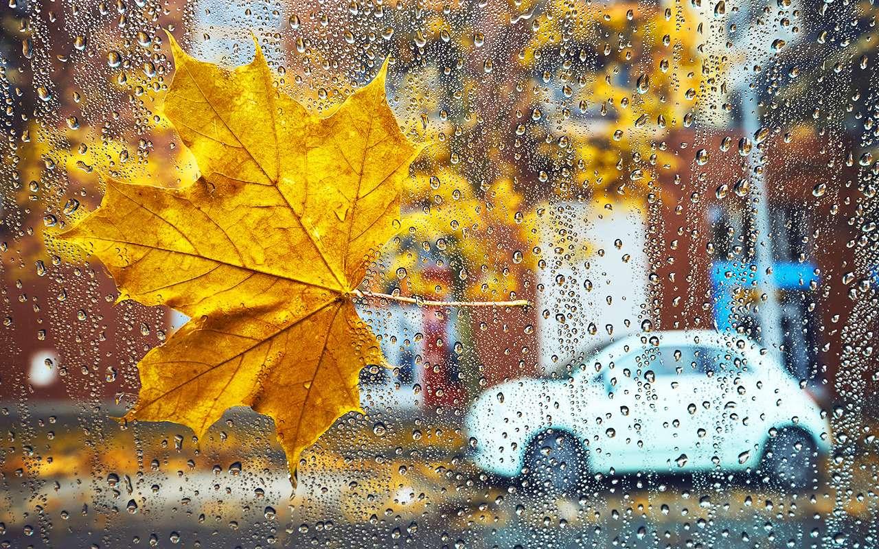 11факторов, окоторых водителю надо помнить осенью— фото 990887