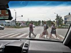 пешеход иводитель
