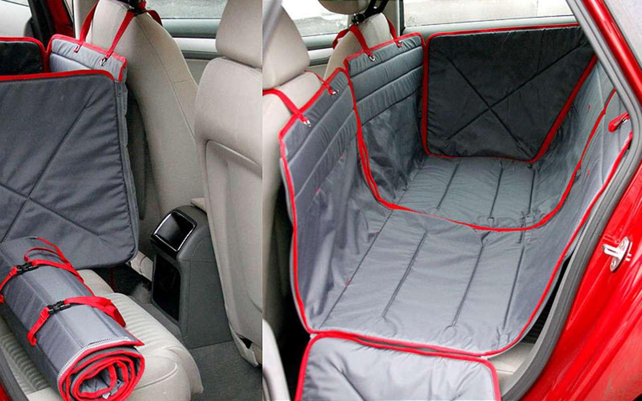 Безопасная перевозка животных вавтомобиле: 10простых правил— фото 978671