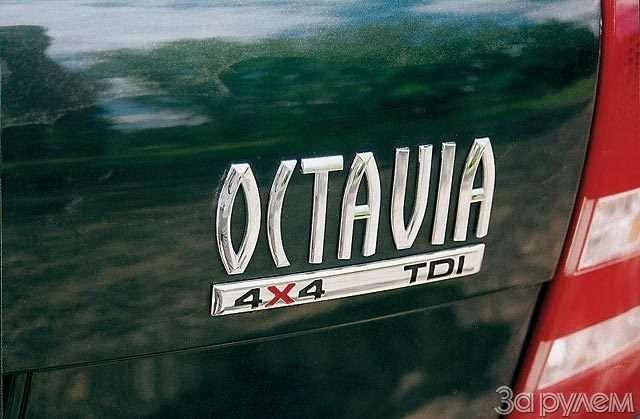 Skoda Octavia 4X4. Между «Фабией» ивертолетом— фото 58428