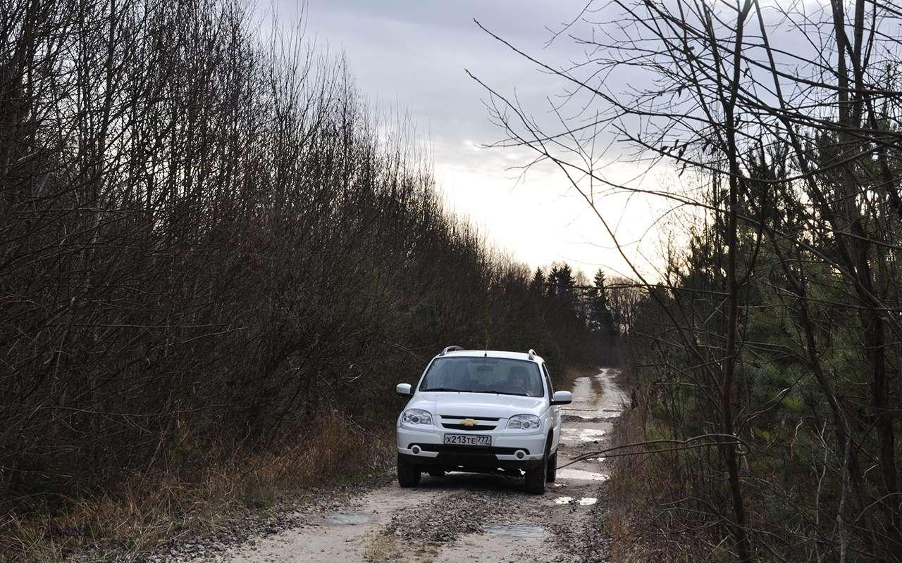 Chevrolet Niva LSGA: плюс 25лошадей и33Нм момента!— фото 924606