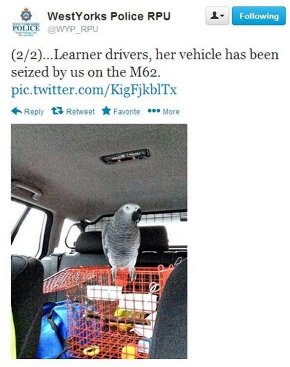 WEST YORKSHIRE POLICE VIA TWITTER