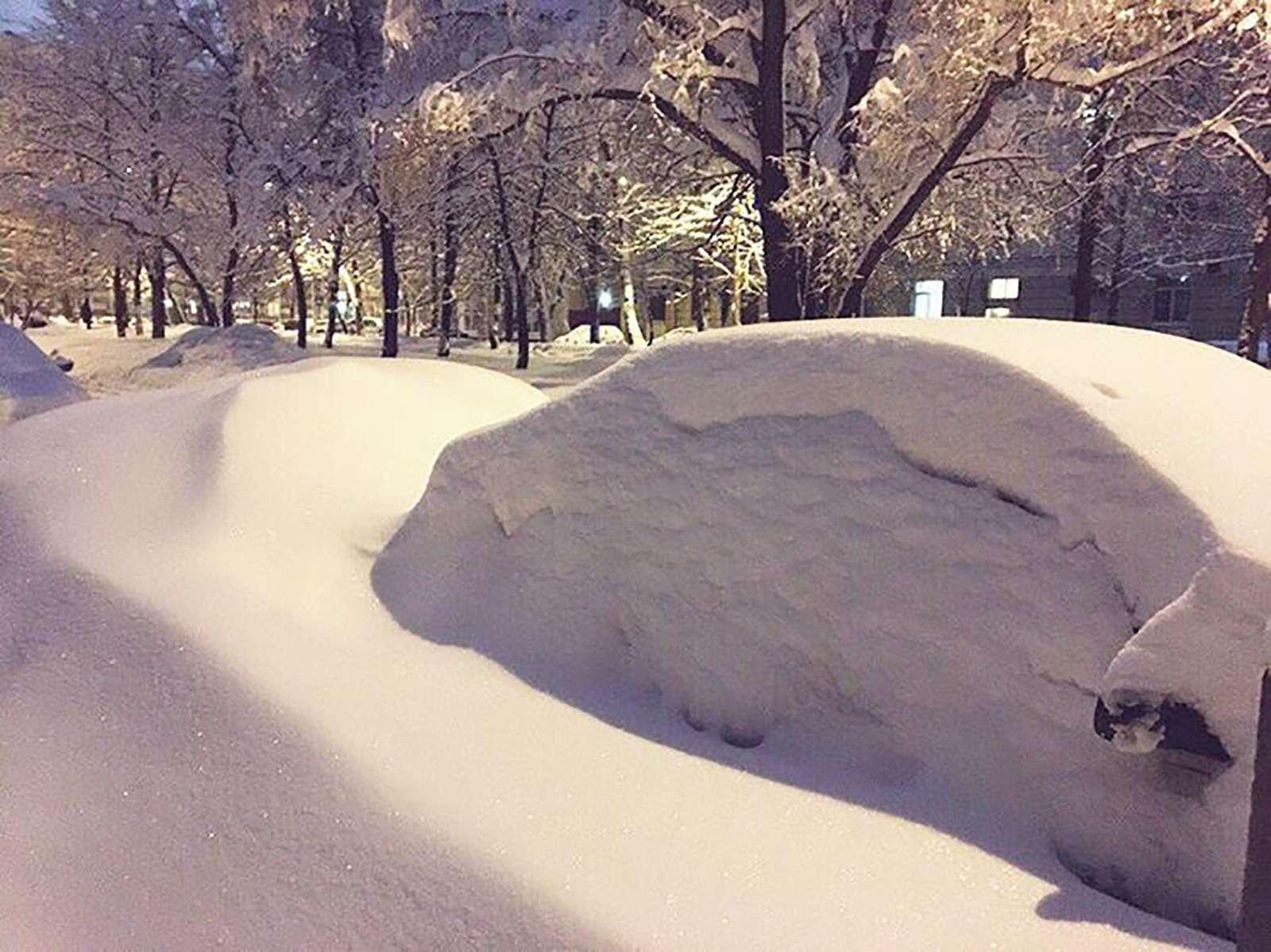 «Снегопад века»: как вМоскве пережили первый катаклизм года— фото 842106