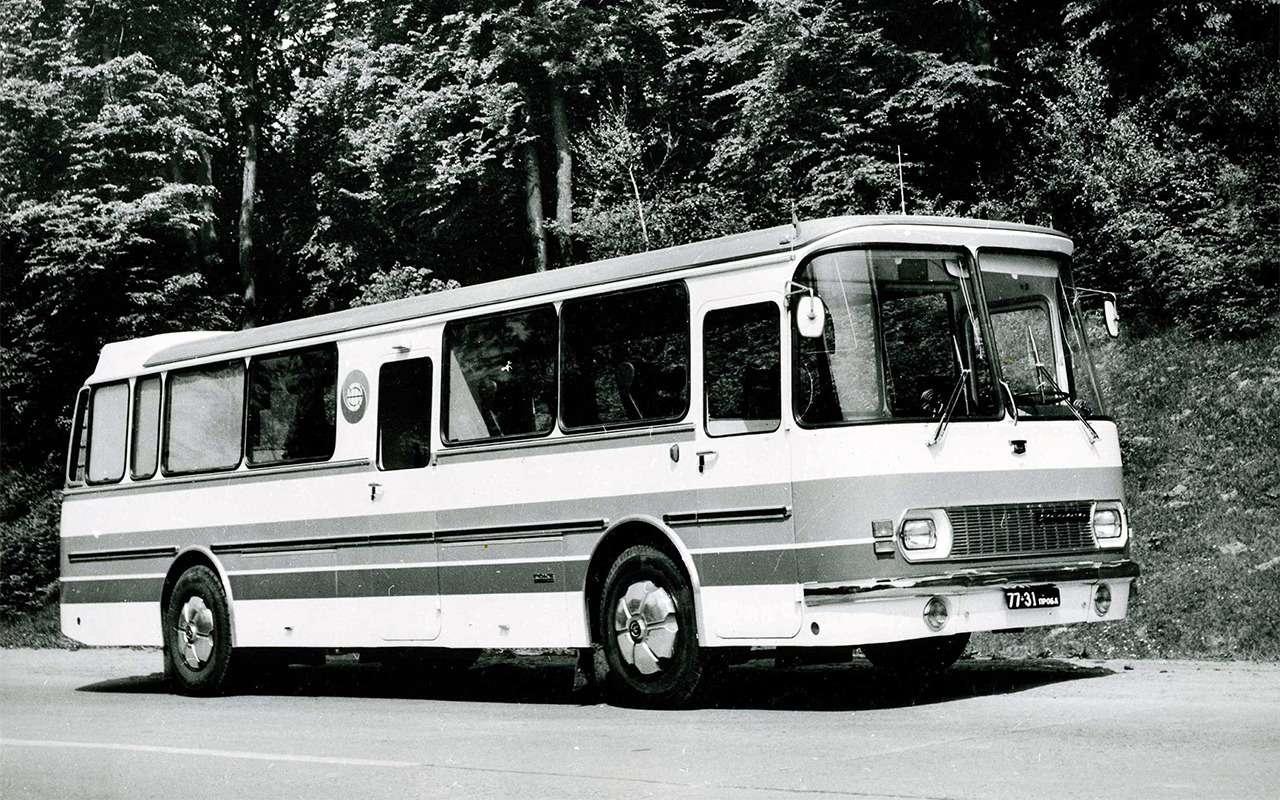 Автобусы, накоторых выникогда неездили— фото 868822