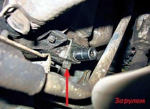 Сливную пробку нарадиаторе выкручиваем ключом «на12» дотех пор, пока жидкость непотечет через носик (стрелка). Если вывернуть полностью, антифриз пойдет вдве струи— поймать его будет сложнее.