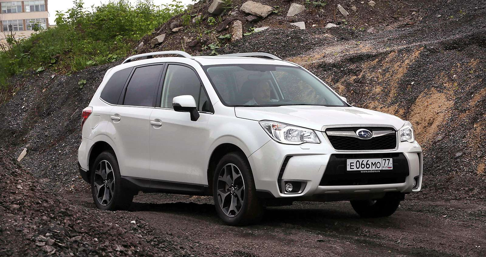 FORESTER-027
