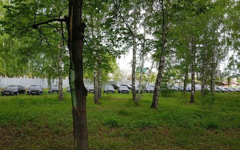 56новых государственных Toyota Camry спрятали влесу. Наних никто не ездит