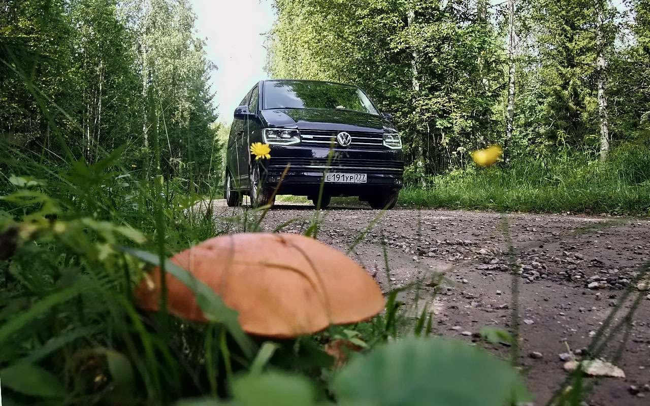 Отпуск зарулем— наминивэне Volkswagen Multivan вФинляндию— фото 791113