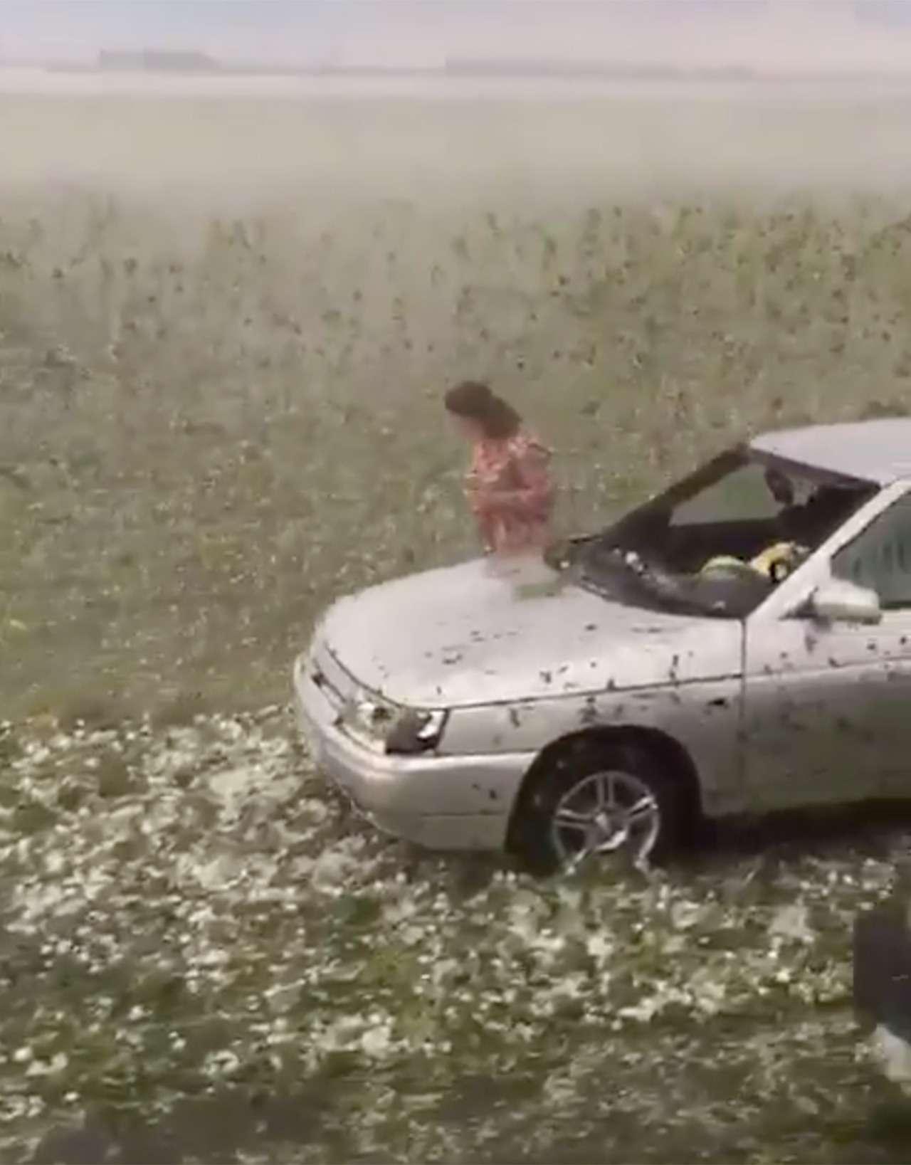 Разгул стихии: мощным градом побило сотни машин вКраснодарском крае— фото 883563
