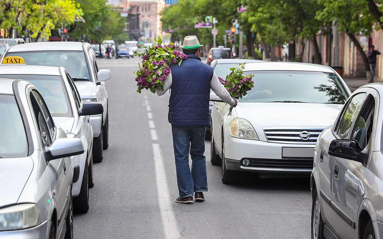 Водители против пешеходов: как не задавить человека— фото 865742