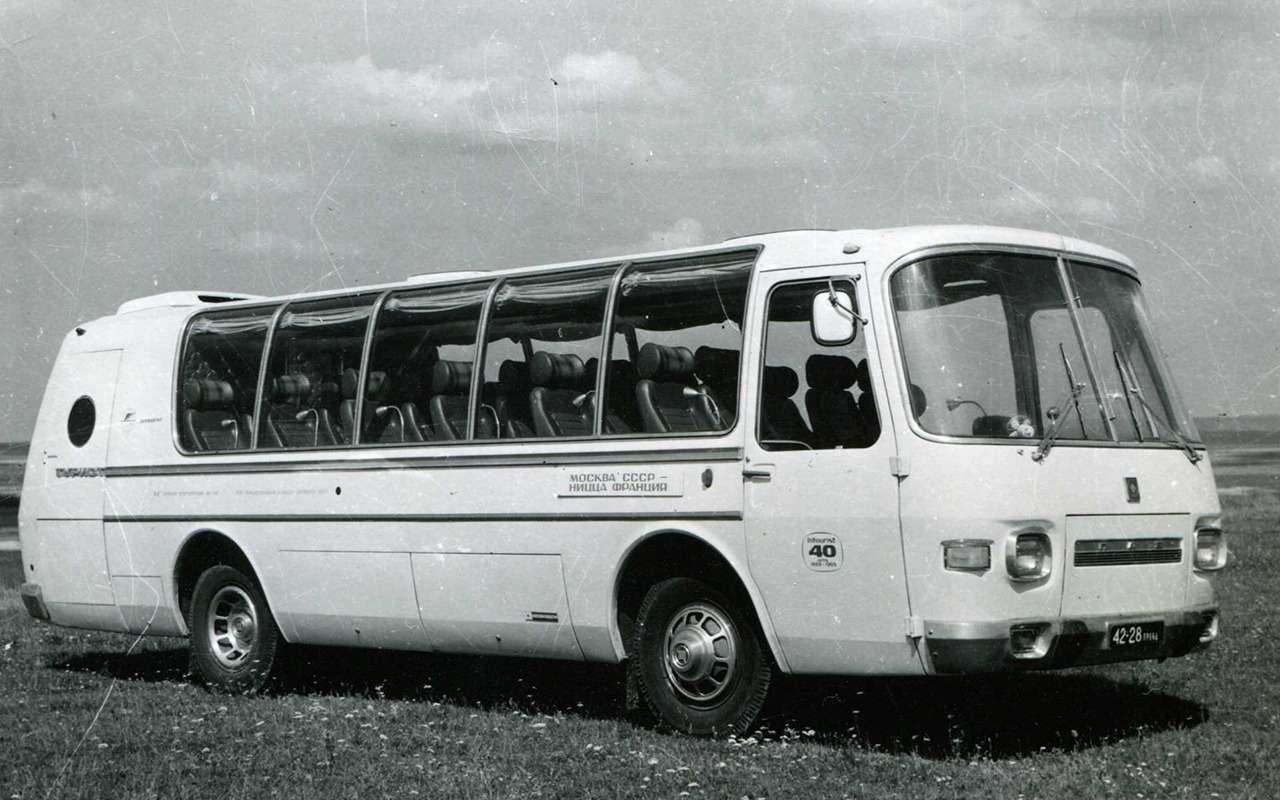 Автобусы, накоторых выникогда неездили— фото 868820