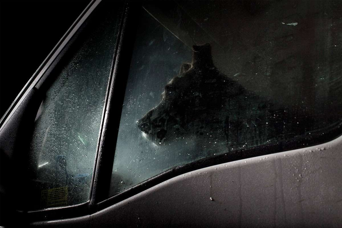dogs-in-cars-the-artistic-side-of-abandoning-man-s-best-friend-photo-gallery_6