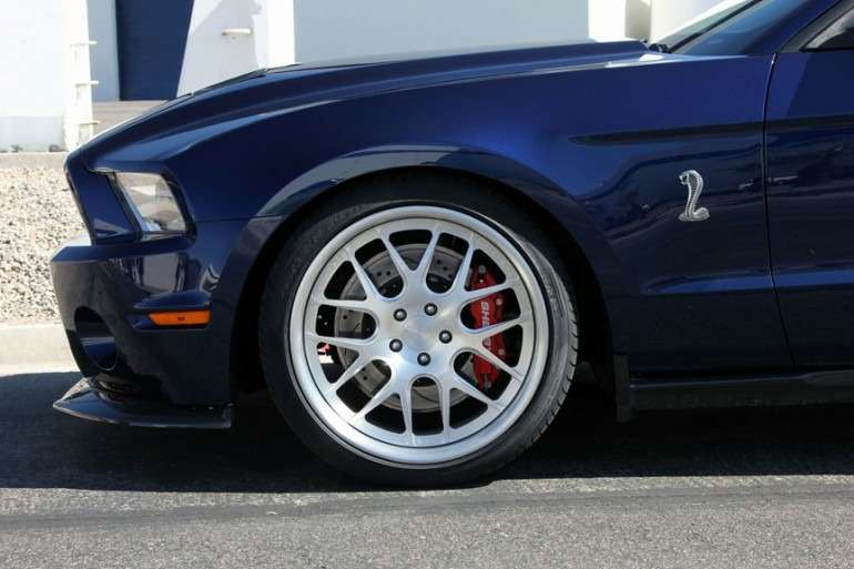 shelby_1000-2