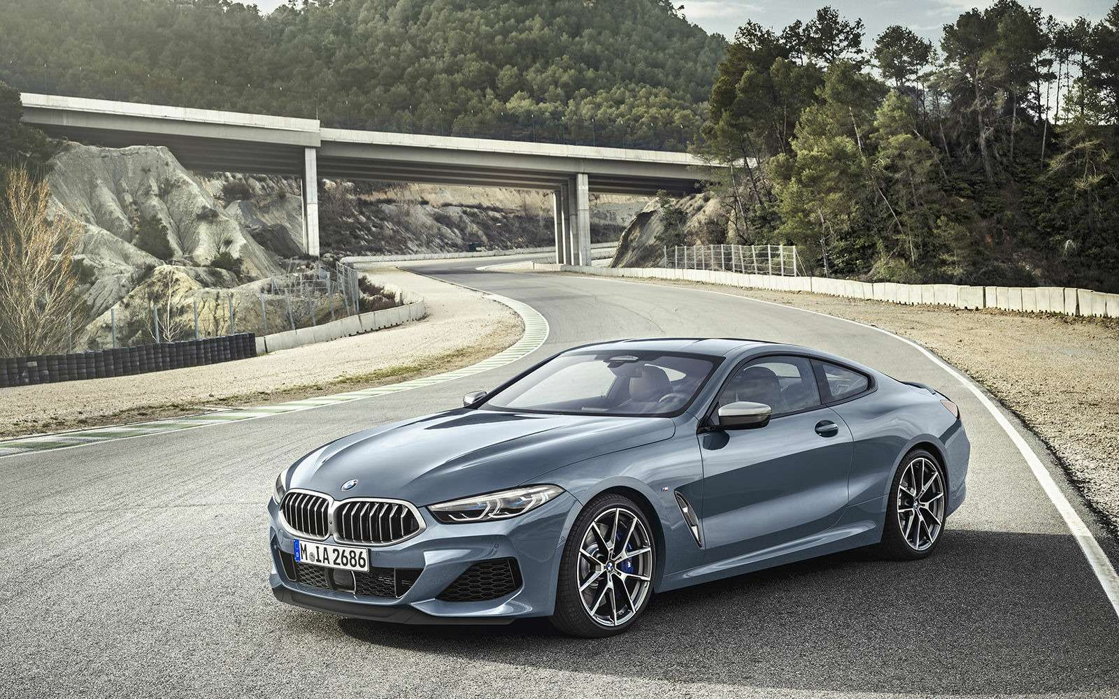 BMW8-й серии. 20лет спустя (почти)— фото 879662