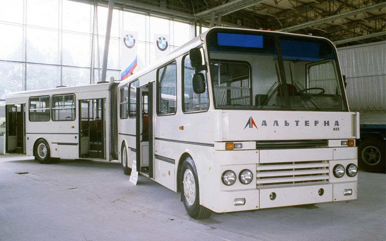 Автобусы, накоторых выникогда не ездили— фото 868824