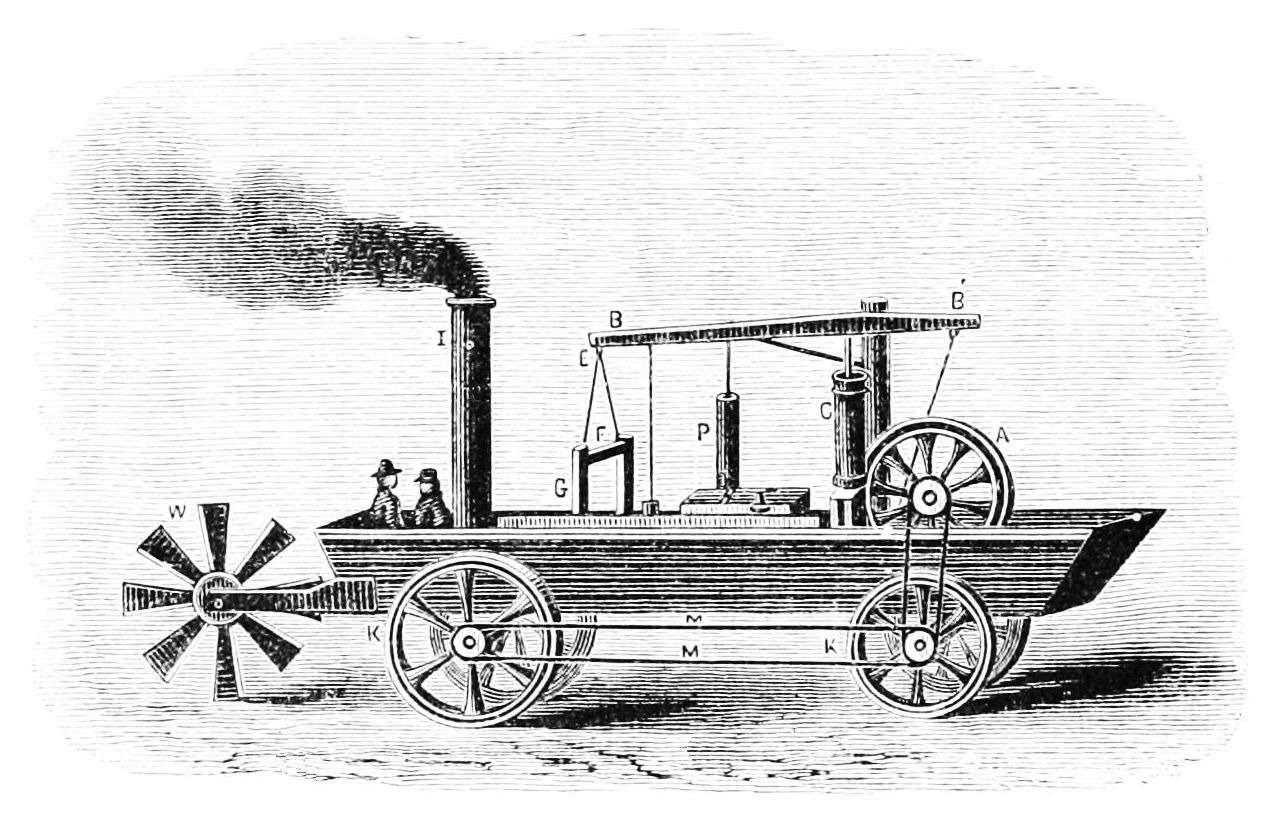 Oructor amphibolis 1804