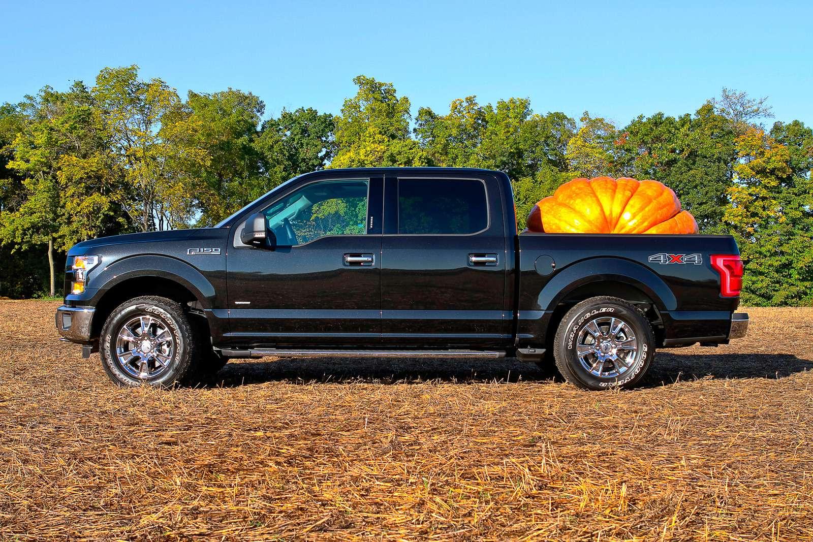 f150-pumpkin06