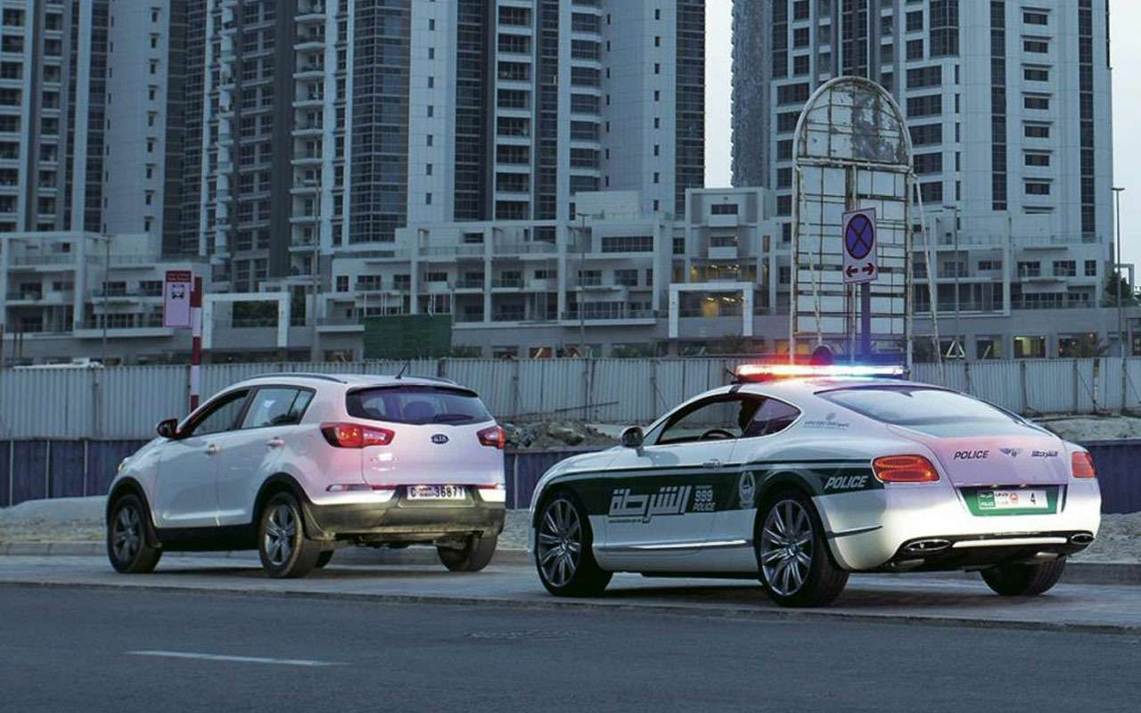 Топ-22 лучших ихудших полицейских автомобилей мира— фото 983535