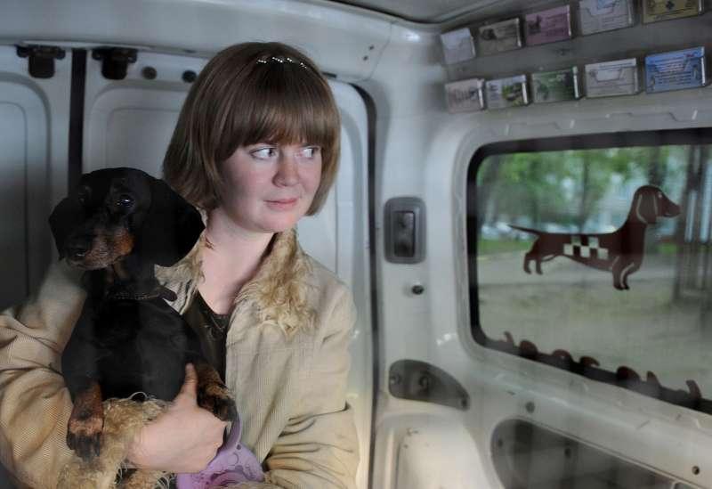 Названы лучшие автомобили дляперевозки собак