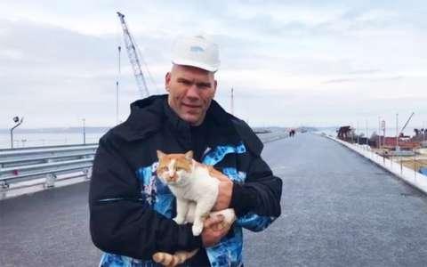 Валуев и котик проинспектировали Крымский мост