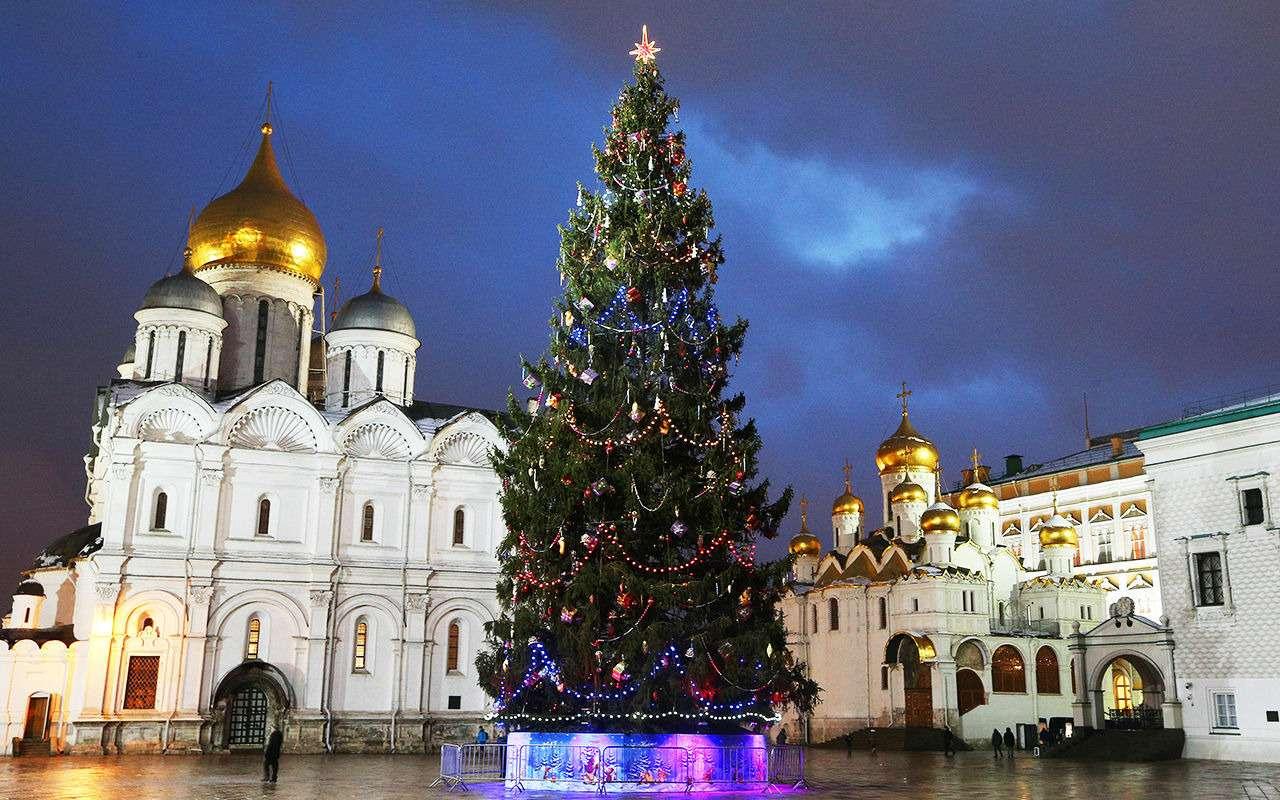 Главная елка страны (икак еевезли вКремль)— фото 932563