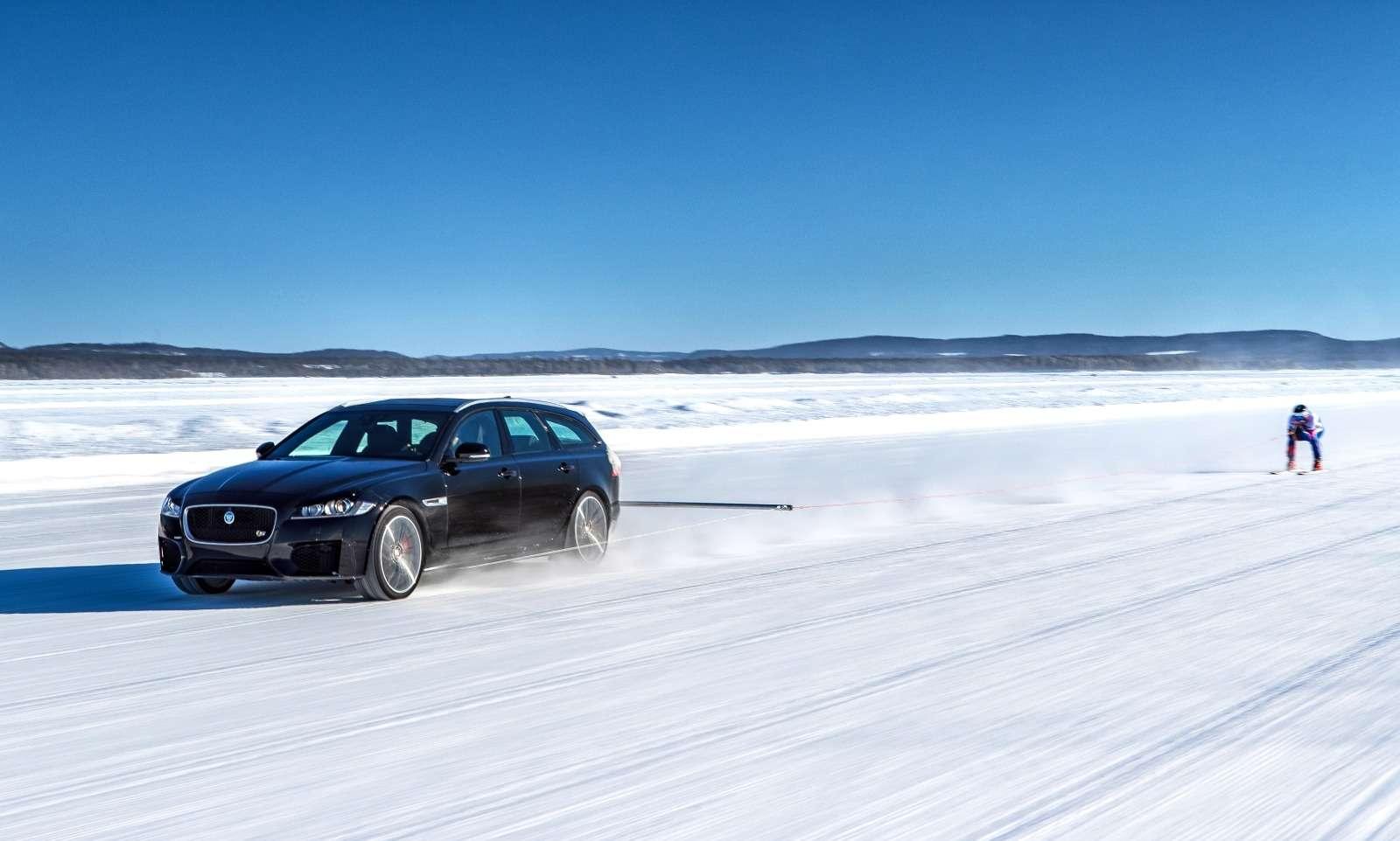 Jaguar установил мировой рекорд... поразгону лыжника— фото 801089