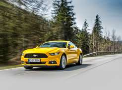 Ford MustangPhoto: James Lipman/ jameslipman.com